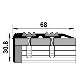 Профиль для ступеней входной группы ПУ 07 чёрный 15 с чёрной вставкой 470